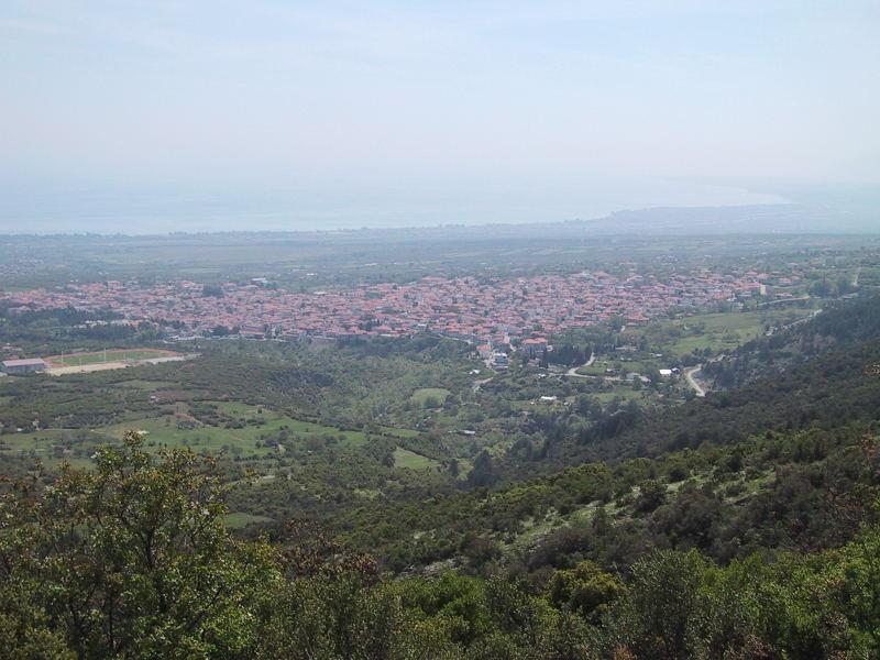 Foto: Wolfgang Lauschensky / Wander Tour / Mytikas 2917m, Olymp / Litochoro vom Radanstieg nach Brionia / 24.11.2009 18:24:56