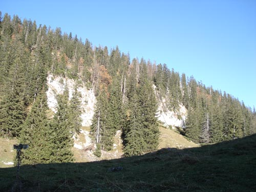 Foto: Jochenruhpolding_Aufnberg / Wander Tour / Hochfelln von Ruhpolding über Strohschneid / 28.11.2009 09:19:14