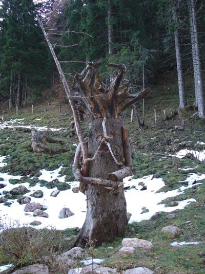 Foto: Jochenruhpolding_Aufnberg / Wander Tour / Hochfelln von Ruhpolding über Strohschneid / 28.11.2009 09:19:29