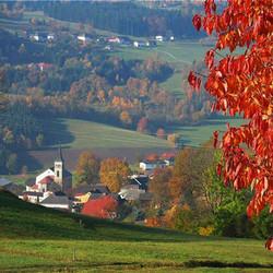 Foto: Ferienregion Böhmerwald / Wander Tour / Schlägler Rundweg / Goldener Herbst in Schlägl / 09.12.2009 10:07:19