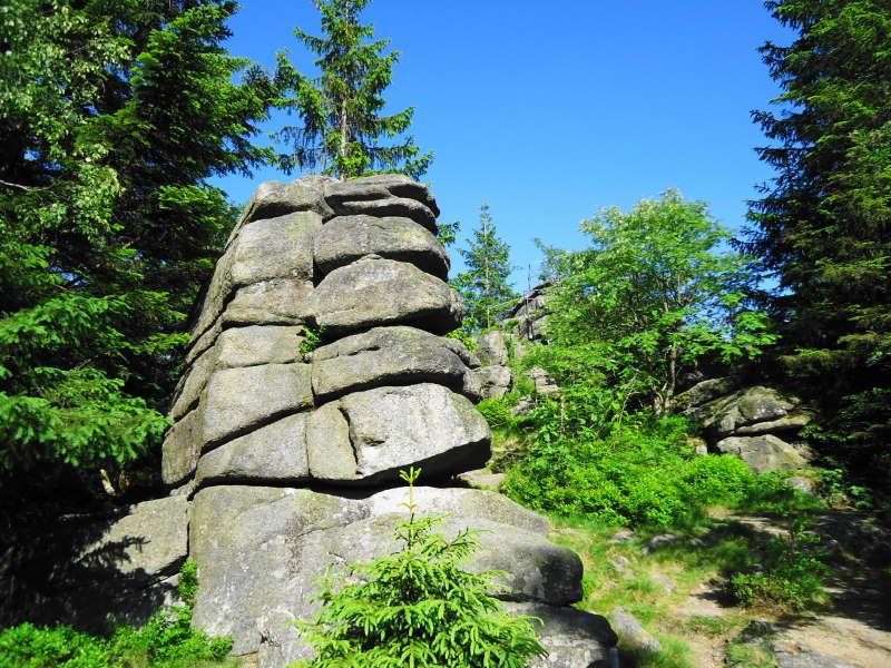 Foto: Günter Siegl / Wander Tour / Bärnsteinrunde / 20.06.2017 22:58:43