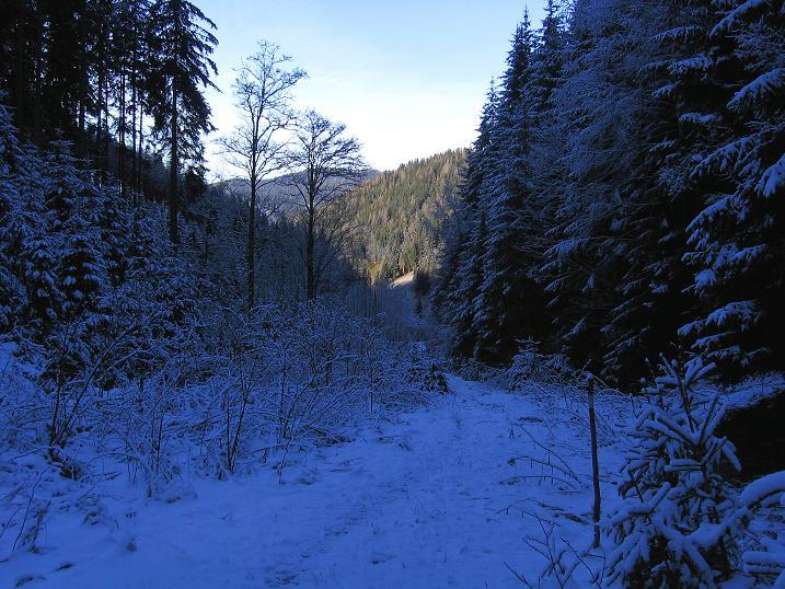 Foto: Andreas Koller / Wander Tour / Aus der Zidritz auf die Kahlwandspitze (2090 m) / 06.12.2009 23:04:40