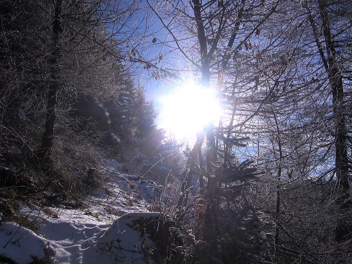 Foto: Andreas Koller / Wander Tour / Aus der Zidritz auf die Kahlwandspitze (2090 m) / 06.12.2009 23:02:55