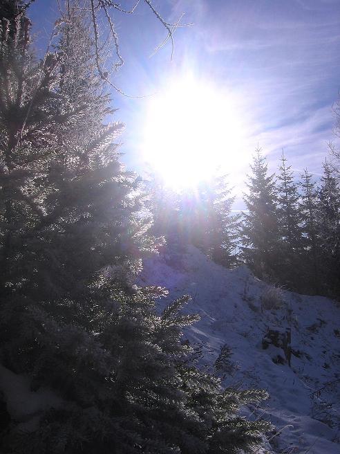 Foto: Andreas Koller / Wander Tour / Aus der Zidritz auf die Kahlwandspitze (2090 m) / 06.12.2009 23:02:36