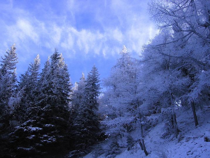 Foto: Andreas Koller / Wander Tour / Aus der Zidritz auf die Kahlwandspitze (2090 m) / 06.12.2009 23:01:46