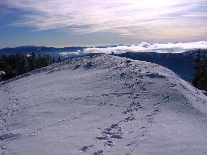 Foto: Andreas Koller / Wander Tour / Aus der Zidritz auf die Kahlwandspitze (2090 m) / 06.12.2009 22:59:10