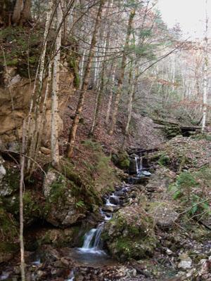 Foto: JochenRuhpolding / Wander Tour / Auf dem Jägersteig zum Hörndlwandgipfel / 06.12.2009 19:06:05