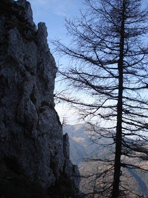 Foto: JochenRuhpolding / Wander Tour / Auf dem Jägersteig zum Hörndlwandgipfel / 06.12.2009 19:07:36