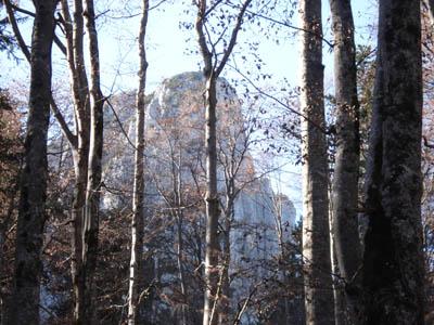 Foto: JochenRuhpolding / Wander Tour / Auf dem Jägersteig zum Hörndlwandgipfel / 06.12.2009 19:09:52
