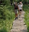 Foto: Ferienregion Böhmerwald / Wander Tour / Waldsteig / Bayrische Au / 07.12.2009 11:25:24