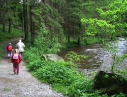 Foto: Ferienregion Böhmerwald / Wander Tour / Michlweg / 09.12.2009 11:20:50