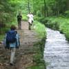Foto: Ferienregion Böhmerwald / Wander Tour / Steilstufenweg - große Runde / 07.12.2009 12:20:21