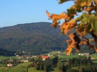 Foto: Ferienregion Böhmerwald / Wander Tour / Sagenweg / 10.12.2009 09:21:42