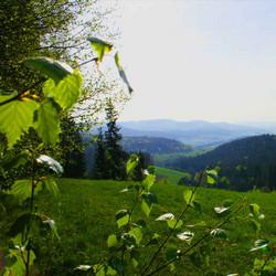 Foto: Ferienregion Böhmerwald / Wander Tour / Psalmenweg Rohrbach / 11.12.2009 08:03:35