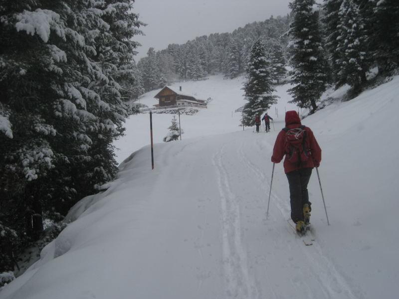 Foto: Wolfgang Lauschensky / Ski Tour / Faltegartenköpfl 2184m / Feldringalm / 10.12.2009 22:10:31