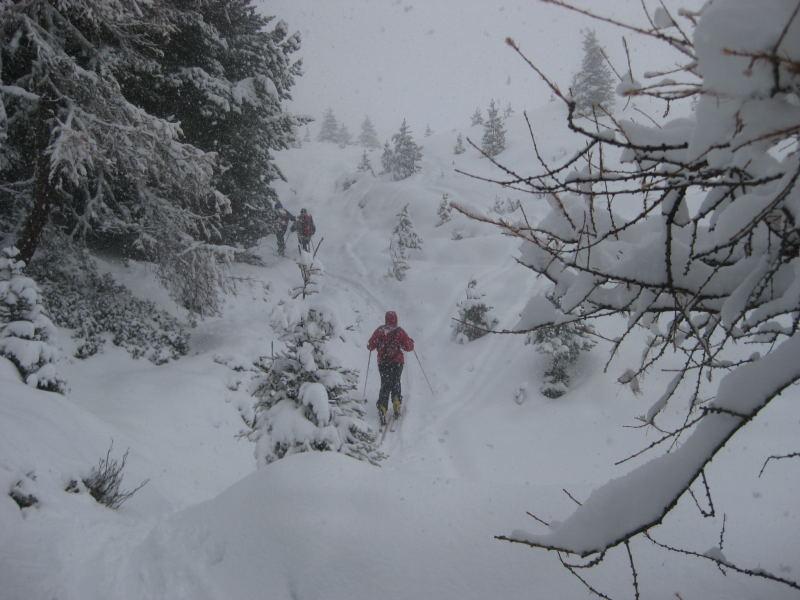 Foto: Wolfgang Lauschensky / Ski Tour / Faltegartenköpfl 2184m / auch bei schlechter Sicht traumhaft / 10.12.2009 22:10:05
