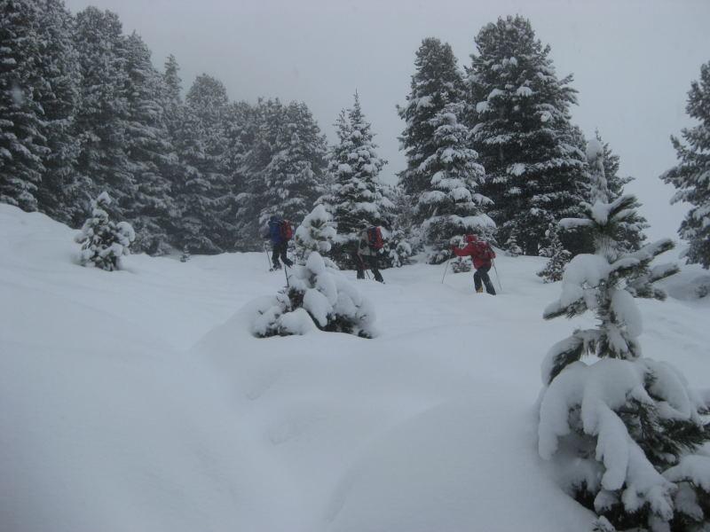Foto: Wolfgang Lauschensky / Ski Tour / Faltegartenköpfl 2184m / flach und einfach / 10.12.2009 22:09:50