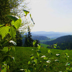 Foto: Ferienregion Böhmerwald / Wander Tour / Kirsteig / 11.12.2009 08:33:27