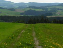 Foto: Ferienregion Böhmerwald / Wander Tour / Kirsteig / 11.12.2009 08:33:59
