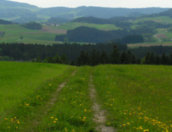 Foto: Ferienregion Böhmerwald / Wander Tour / Saubergerweg / 11.12.2009 08:43:26