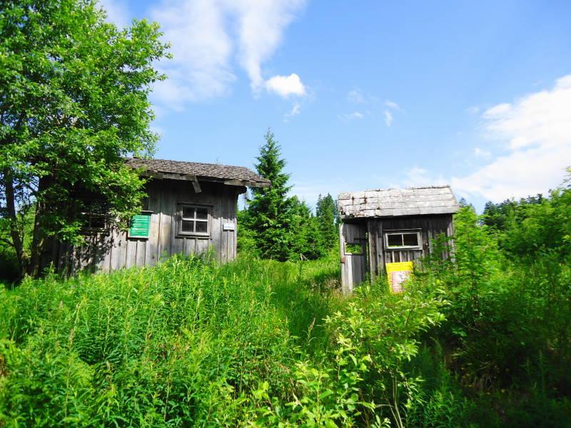 Foto: Günter Siegl / Wander Tour / Dreiländerwanderung / 17.07.2017 22:54:48