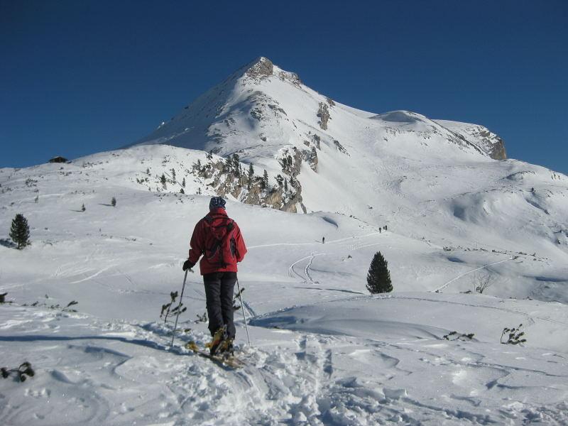Foto: Wolfgang Lauschensky / Ski Tour / Pareispitze oder Col Bechei Dessora 2794m / am Limojoch Richtung Pareispitze / 12.12.2009 12:06:20