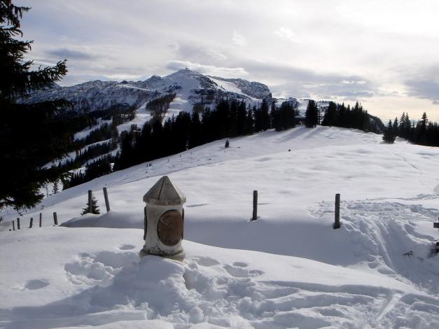 Foto: Manfred Karl / Ski Tour / Von der Winklmoosalm zur Steinplatte / Am Scheibelberg (Drei- oder Driländereck) / 13.12.2009 17:34:33