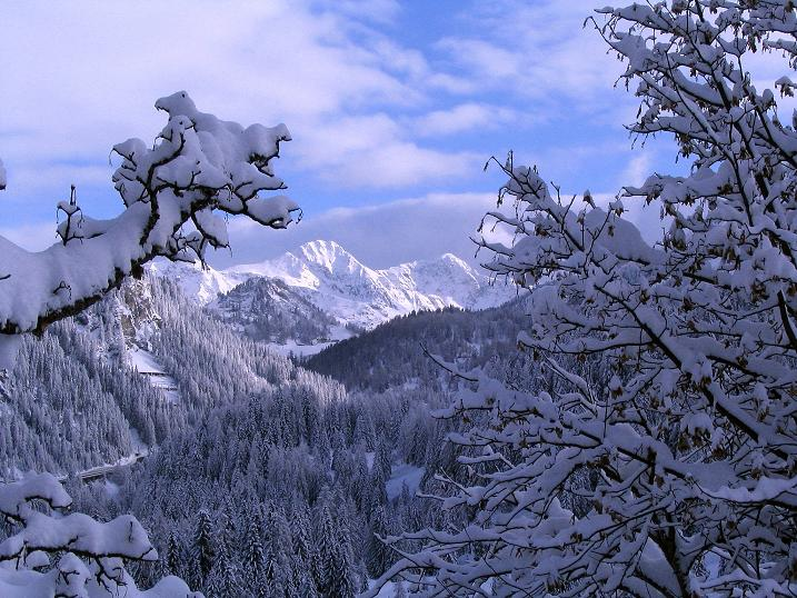 Foto: Andreas Koller / Ski Tour / Direkter Anstieg auf den Hengst (2076 m) / 15.12.2009 21:08:27