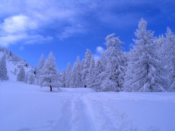 Foto: Andreas Koller / Ski Tour / Direkter Anstieg auf den Hengst (2076 m) / 15.12.2009 21:08:01
