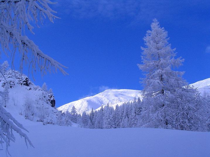 Foto: Andreas Koller / Ski Tour / Direkter Anstieg auf den Hengst (2076 m) / 15.12.2009 21:07:46