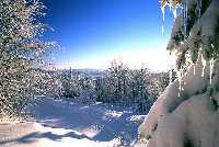 Foto: Ferienregion Böhmerwald / Wander Tour / Winterwanderweg: Klafferrunde / 14.12.2009 11:41:25