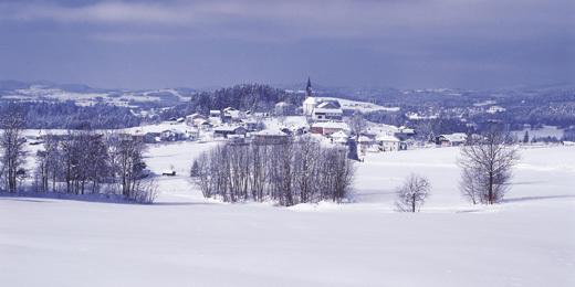 Foto: Ferienregion Böhmerwald / Wander Tour / Winterwanderweg: Jagaspitzweg / 15.12.2009 09:05:51