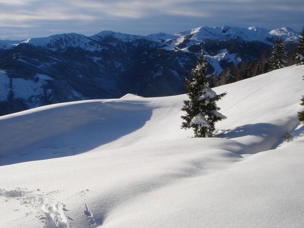 Foto: Manfred Karl / Ski Tour / Von Flachauwinkl auf den Vorderkogel / 26.12.2017 17:33:48