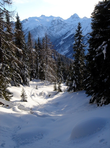 Foto: Manfred Karl / Ski Tour / Von Flachauwinkl auf den Vorderkogel / 26.12.2017 17:33:43