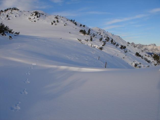 Foto: Manfred Karl / Ski Tour / Von Flachauwinkl auf den Vorderkogel / 26.12.2017 17:33:27