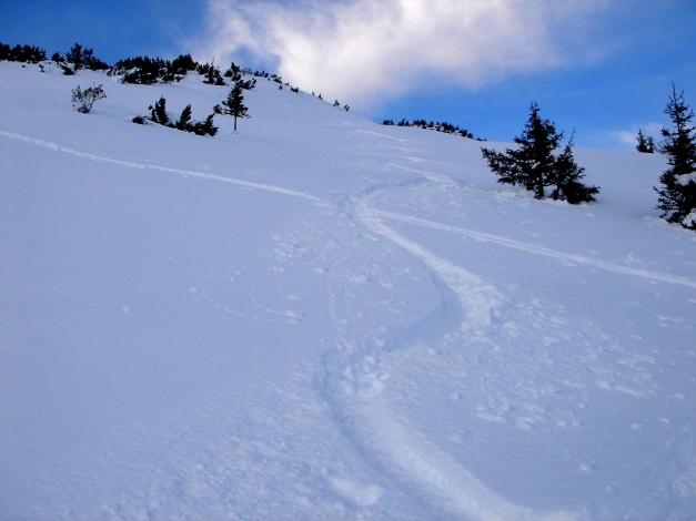 Foto: Manfred Karl / Ski Tour / Von Flachauwinkl auf den Vorderkogel / Abfahrtsgenuss im Frühwinter vom Vorderkogel / 15.12.2009 22:12:46