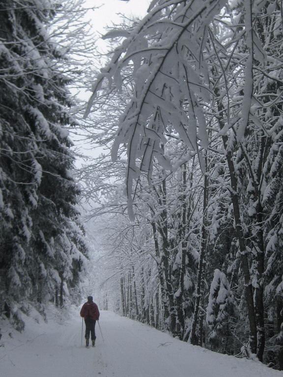 Foto: Wolfgang Lauschensky / Ski Tour / Pfaffenkegel 1837m, Torrenerjoch / vor der Jenner-Mittelstation / 16.12.2009 18:49:53