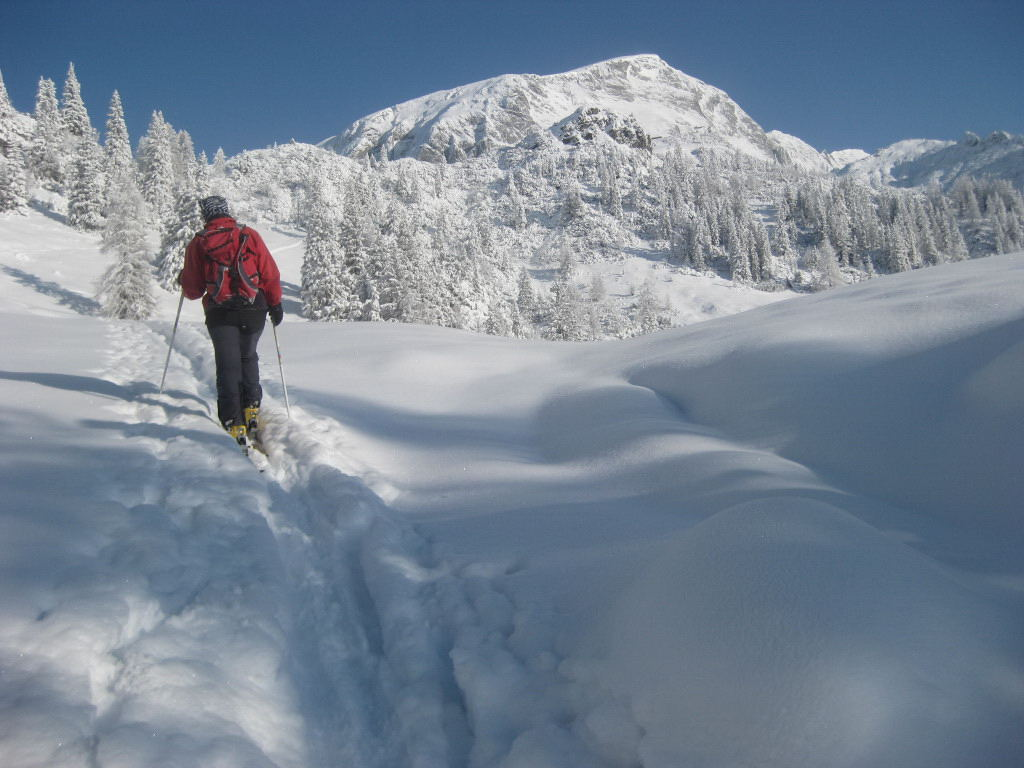 Foto: Wolfgang Lauschensky / Ski Tour / Pfaffenkegel 1837m, Torrenerjoch / zu den Königsbergalmen, Hohes Brett am Horizont / 16.12.2009 18:49:07