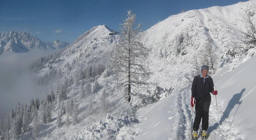 Foto: Wolfgang Lauschensky / Ski Tour / Pfaffenkegel 1837m, Torrenerjoch / Jenner aus der Querung zum Torrenerjoch / 16.12.2009 18:48:13