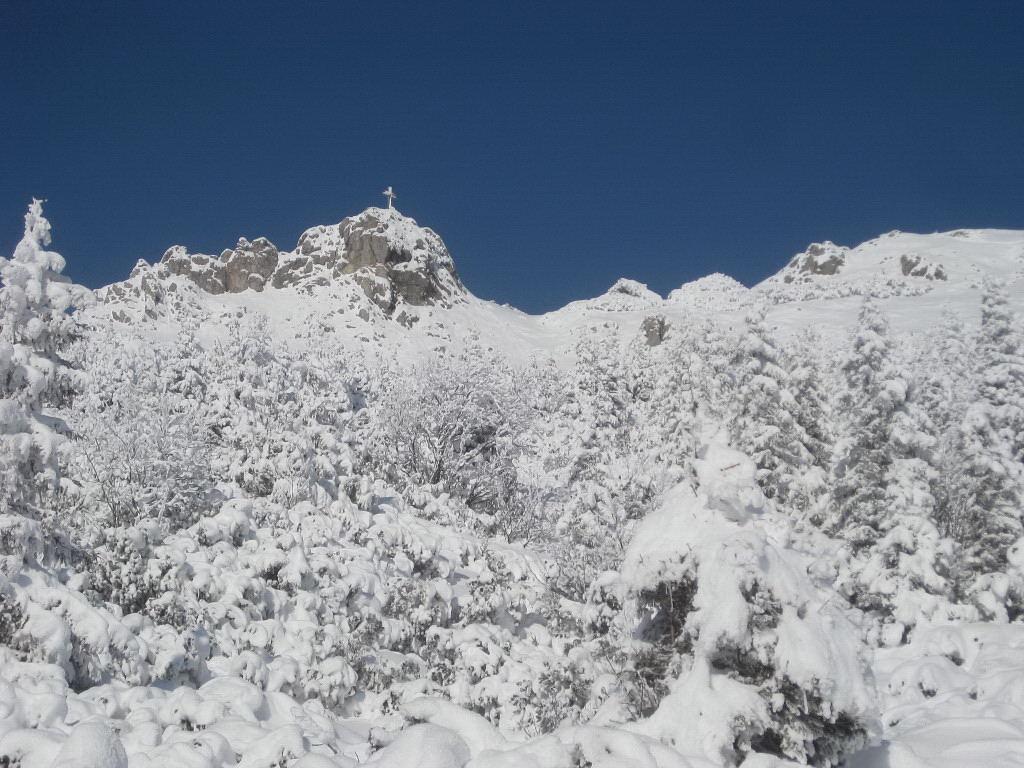 Foto: Wolfgang Lauschensky / Ski Tour / Pfaffenkegel 1837m, Torrenerjoch / Pfaffenkegel: nicht über das Latschengelände aufsteigen! / 16.12.2009 18:47:44