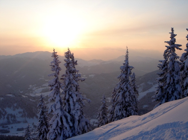 Foto: Manfred Karl / Ski Tour / Hirscheck aus dem Heutal / Aufstieg zum Hirscheck / 17.12.2009 20:47:26