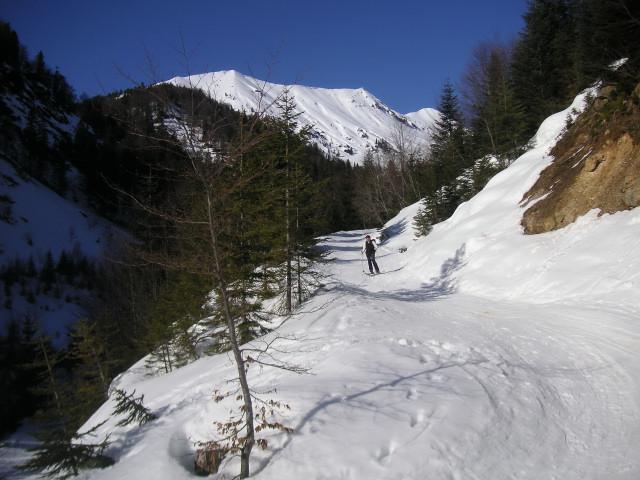 Foto: Wolfgang Lauschensky / Ski Tour / Schmalztrager - Überschreitung / Talabfahrt am Güterweg / 21.12.2009 15:08:33