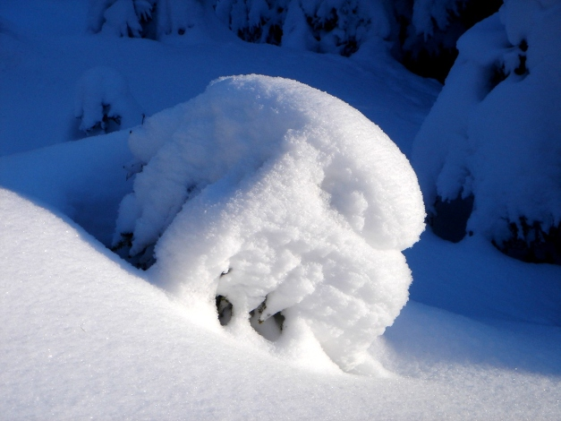 Foto: Manfred Karl / Ski Tour / Von Gerstreit auf das Hirscheck / 25.12.2009 18:26:29