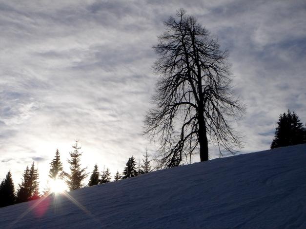 Foto: Manfred Karl / Ski Tour / Wildalphorn / 25.12.2009 18:43:28