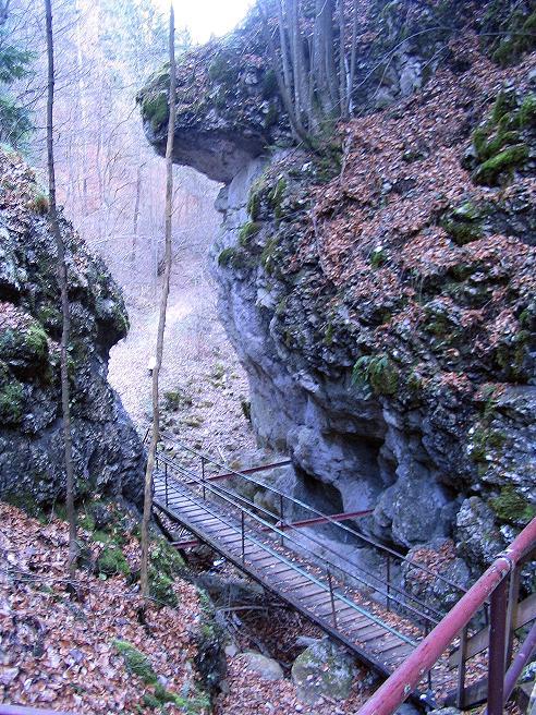 Foto: Andreas Koller / Klettersteigtour / Rudolf-Decker-Steig (720 m) / 27.12.2009 01:54:49