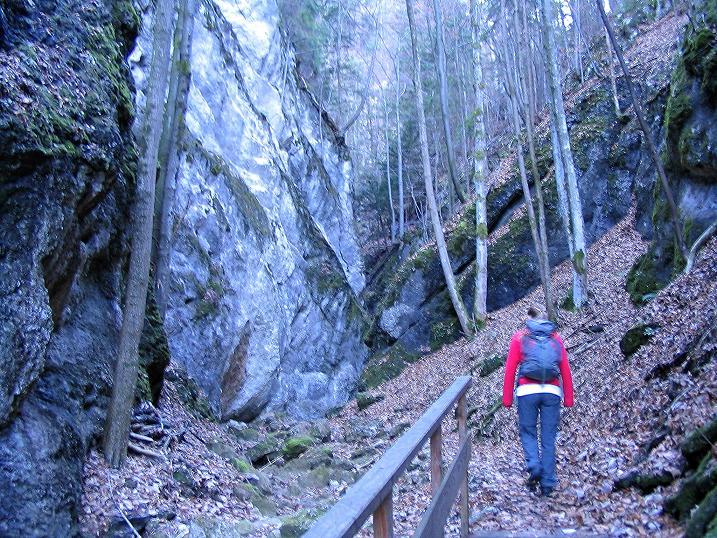 Foto: Andreas Koller / Klettersteigtour / Rudolf-Decker-Steig (720 m) / 27.12.2009 01:54:42