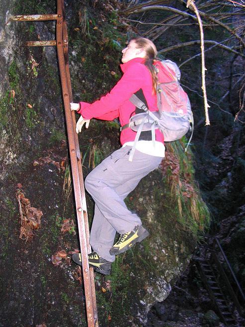 Foto: Andreas Koller / Klettersteigtour / Rudolf-Decker-Steig (720 m) / Einstiegsleiter des Rudolf-Decker-Steigs / 27.12.2009 01:54:06