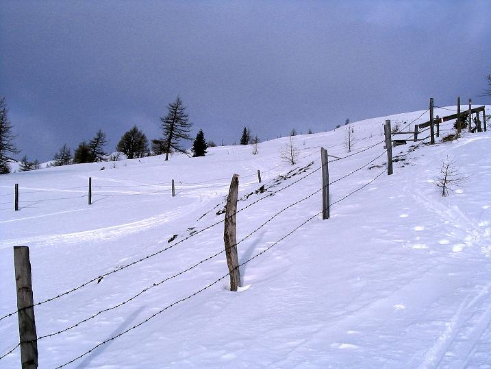 Foto: Andreas Koller / Ski Tour / Rundtour Stubeck (2370 m) / 01.01.2010 20:27:56