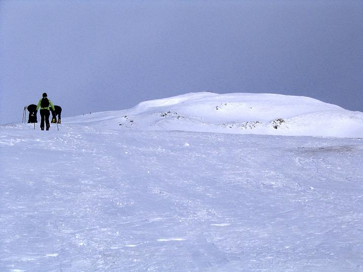 Foto: Andreas Koller / Skitour / Rundtour Stubeck (2370 m) / Sanfte Hänge zum Stubeck / 01.01.2010 20:25:17