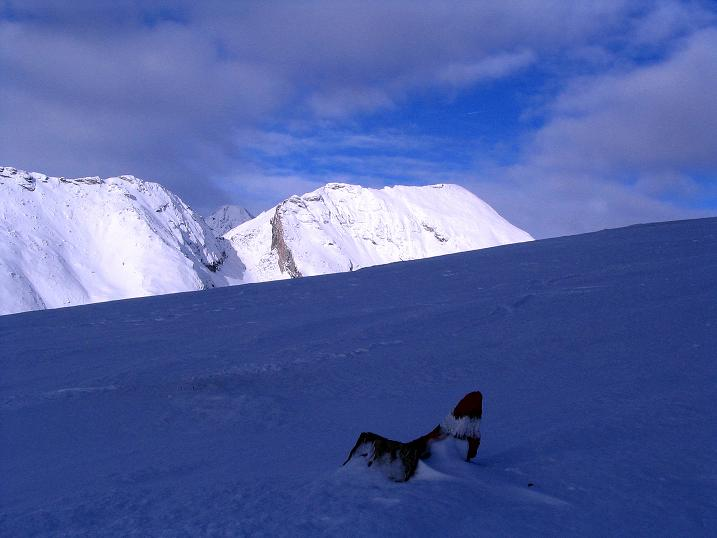 Foto: Andreas Koller / Ski Tour / Rundtour Stubeck (2370 m) / Falschauner Eck (2614 m) und Reitereck (2790 m) / 01.01.2010 20:21:12